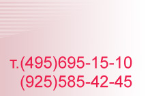 84956951510
